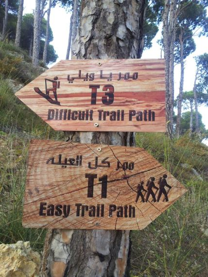 Aley Mountain Trail